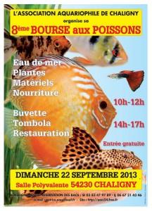 Bourse à Chaligny (54) le 22 septembre 2013 AFFICHEBOURSE2013A-216x300